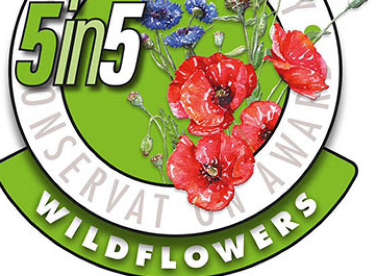 Wild flower Habitat Badge